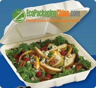 Disposable Bagasse Tableware 1