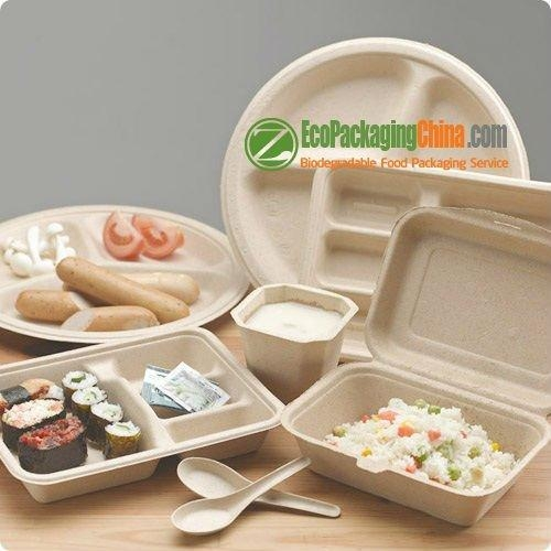 eco friendly bagasse paper clamshell packaging 1