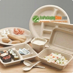 eco friendly bagasse paper clamshell