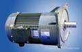 Flanged Mounted Gear Motor