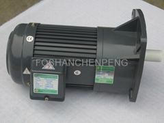 Gear Motor (Vertical type)