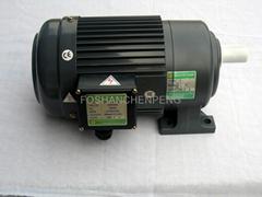 Geared Motor Horizontal Type