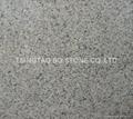 Natural grey granite