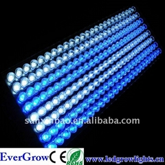 200w led aquarium light