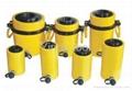 Hydraulic hollow plunger cylinder RCH-10075