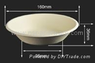 Biodegradable Bagasse Tableware Disposable Bowl Manufactu 1
