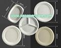 9.5 Inch Round Bagasse Tableware