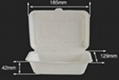 600ml Biodegradable Bagasse Disposable Bento Lunch Boxes 5