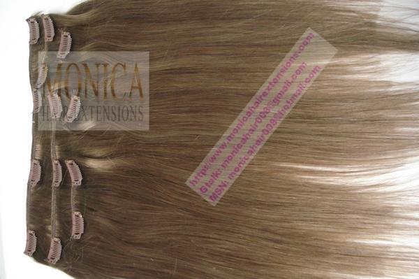 Remy Clip in Hair 1