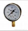YN、YN-B Series Shock-proof Pressure