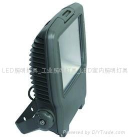 LED氾光燈PF21L 1