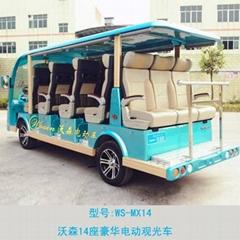 濟寧11座電動觀光車