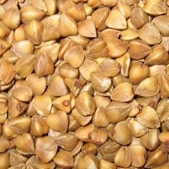 Roasted Buckwheat Kernel