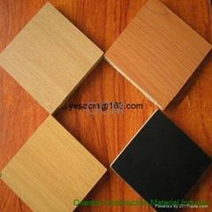 Laminated Mgo board/HPL Veneer Mgo Board