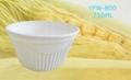 Biodegradable Bowl