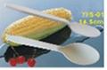Biodegradable Spoon