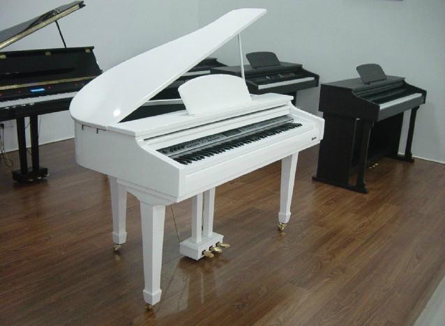 88 key Digital Piano 1
