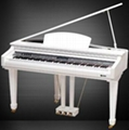 88 key Digital Piano 5