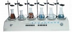 六联控温磁力搅拌器