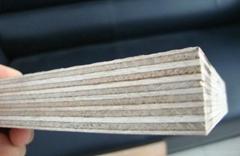Lisen Wood Industrial Shouguang Co., LTD