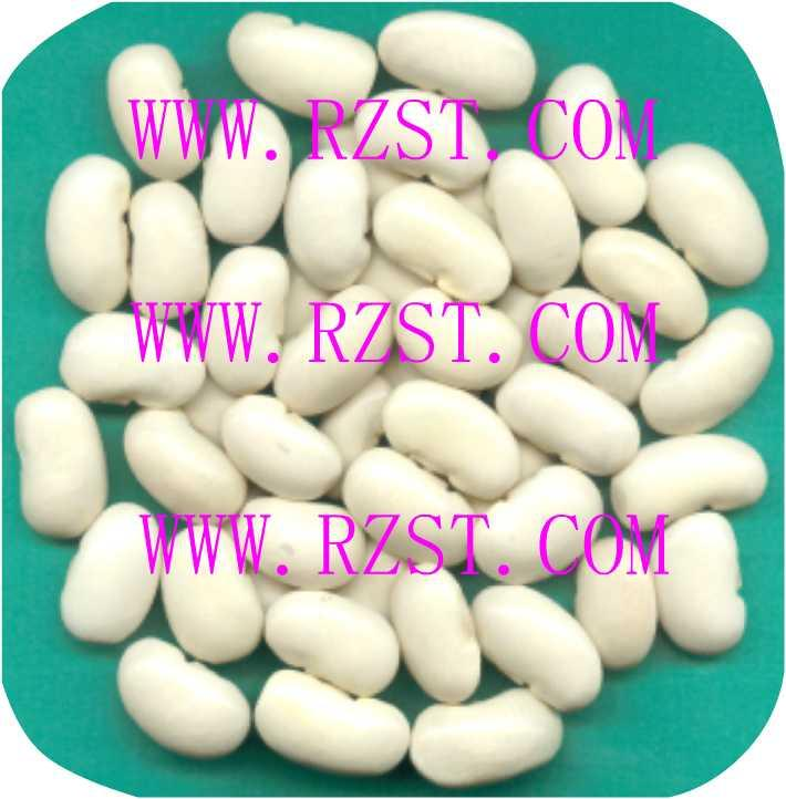 Large White Kidney Beans 1