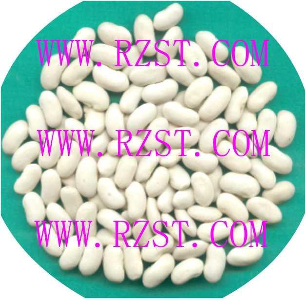 LongWhite Kidney Beans 1