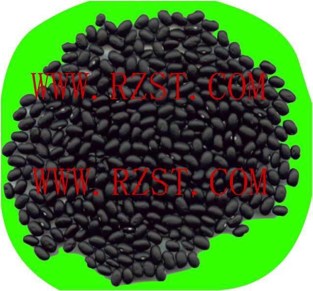 Small Black Beans 1