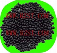 Small Black Beans