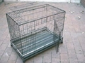 Two doors welded metal wire dog cage