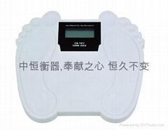 Personal Electronic Health  Scale