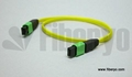 MPO-MPT Fiber Cable Assembly