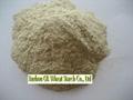 Vital wheat gluten 1