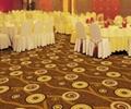 酒店威尔顿满铺地毯 2