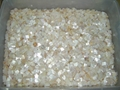 Loose mother of pearl mosaic squares