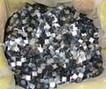 Loose Black Tahiti MOP mosaics
