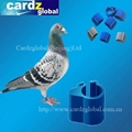 RFID ANIMAL TAG FOR PIGEON AND CHICKEN