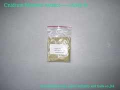 common cnidium extract