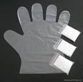 pe gloves pair 5