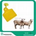 RFID UHF animal ear tags