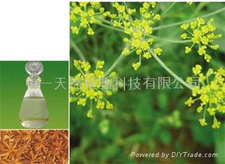 八角茴香油 1