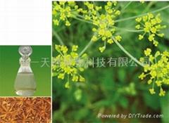 八角茴香油