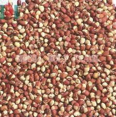 Red cowpea bean