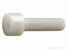 尼龙内六角头塑料螺丝