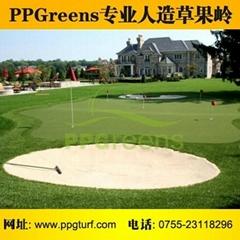 深圳市绿园人造草坪有限公司
