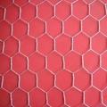涂塑六角网 拧花网