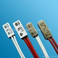 Bimetal thermal switch for heating motor