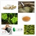natural Green Coffee Bean Extract powder ( colin At 3wbio com) 1