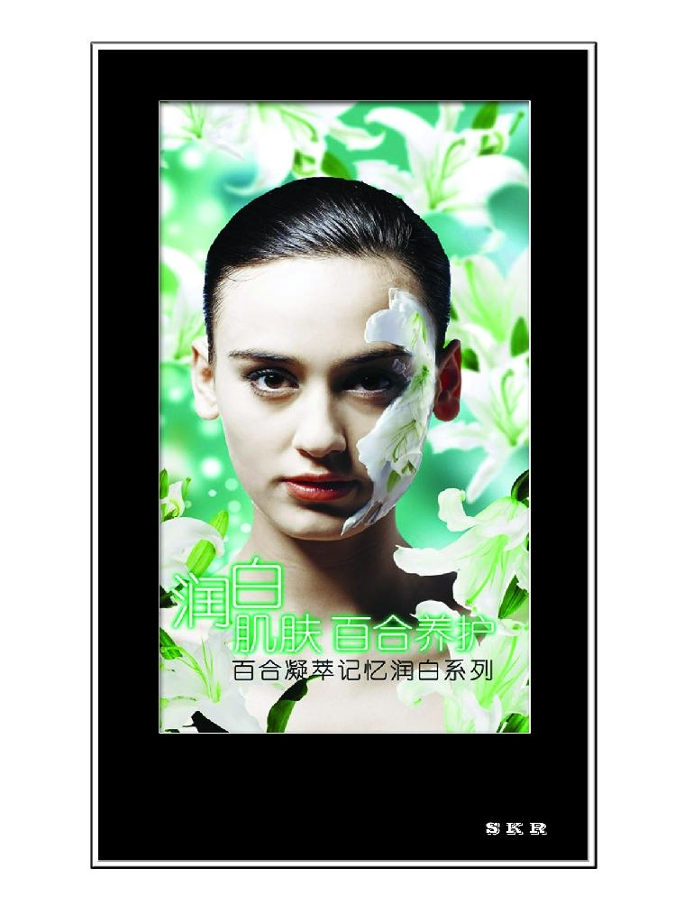 42inch LCD Digital Poster Advertising Display - SK42 - SKR ...
