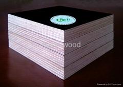 4x8 film faced plywood