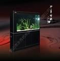 免换水生态鱼缸 5